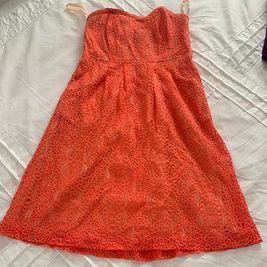 Fossil Lace Dress